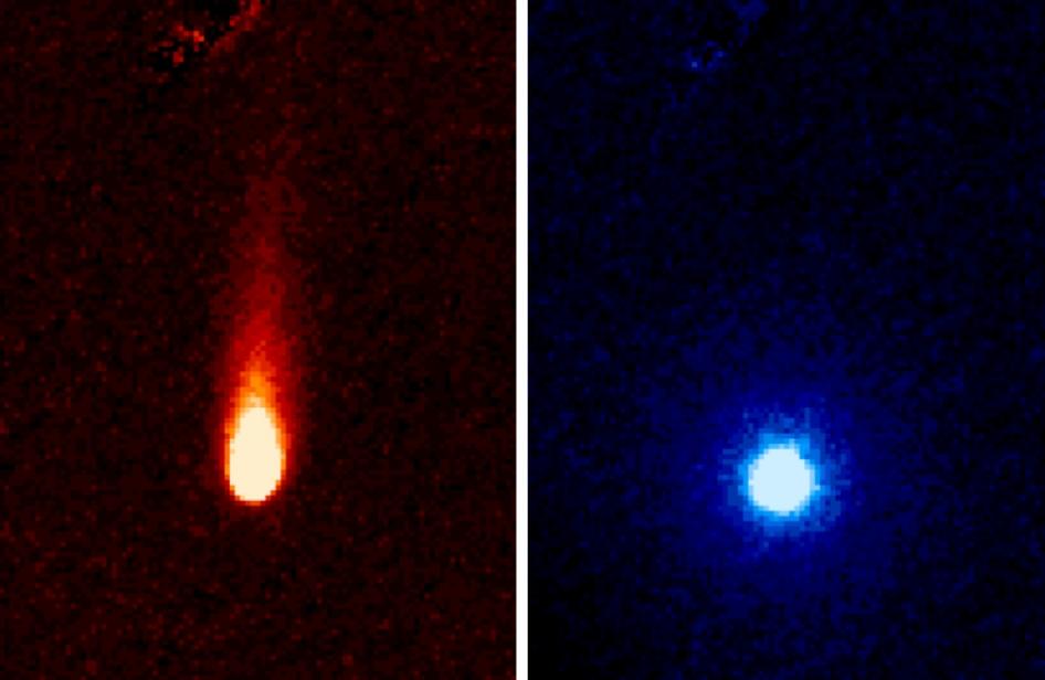 Imágenes del cometa C/2012 S1 (ISON) obtenidas el 13 de Junio de 2013 en órbita heliocéntrica terrestre. Foto: Telecopio Espacial Spitzer, NASA*