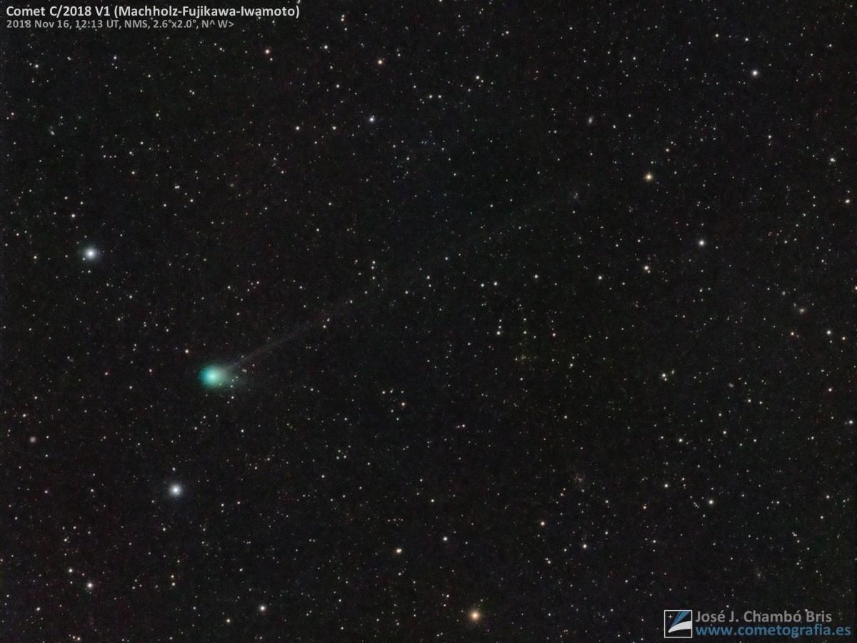 Cometa C/2018 V1 (Machholz-Fujikawa-Iwamoto)