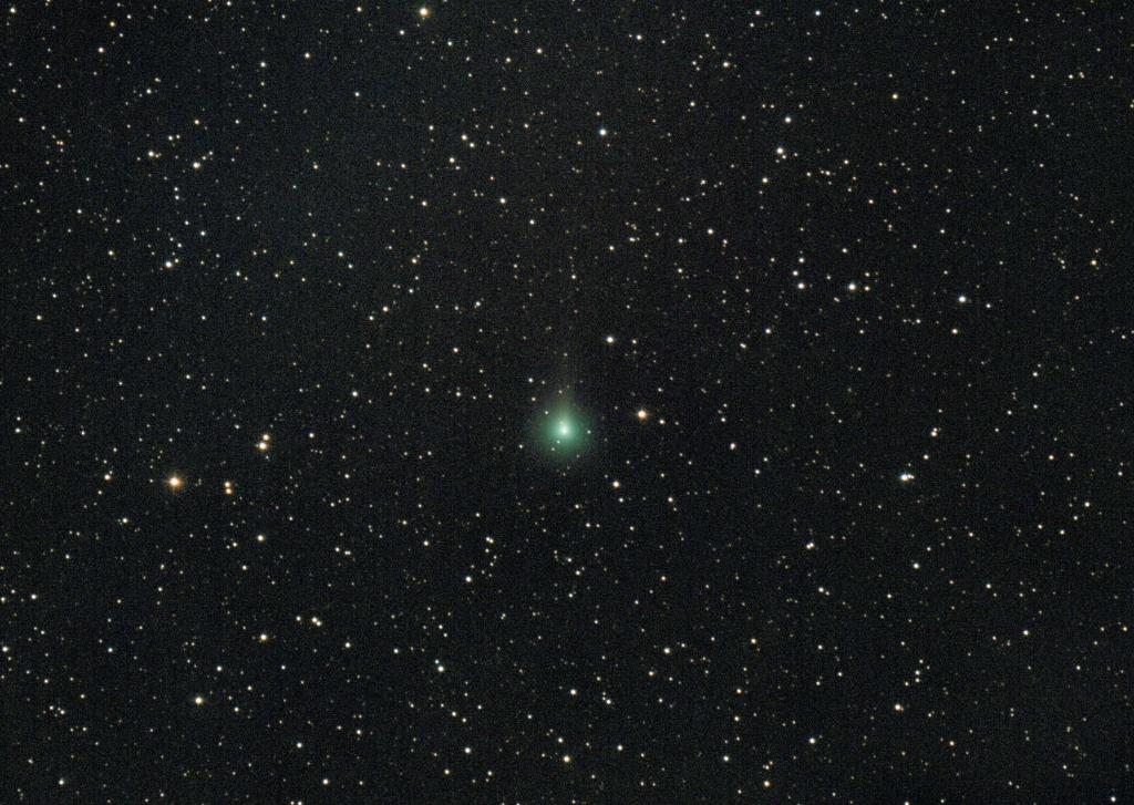 Cometa C/2019 Y1 (ATLAS)